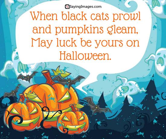 Halloween sayings quotes 2017