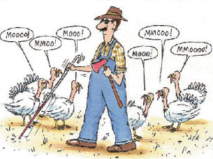 Funny Thanksgiving Clipart Images