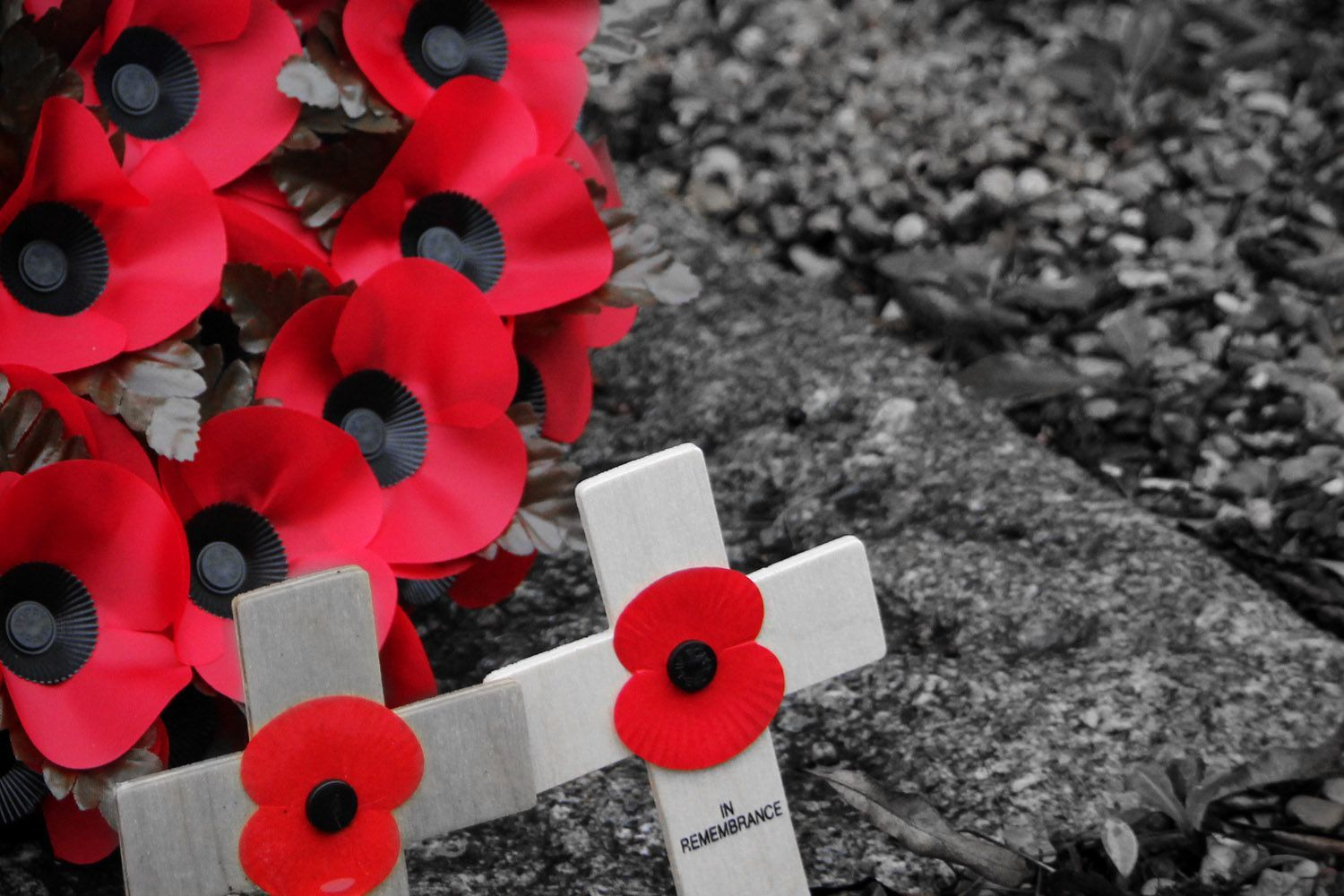 remembrance day hd wallpaper, remembrance day soldiers graves