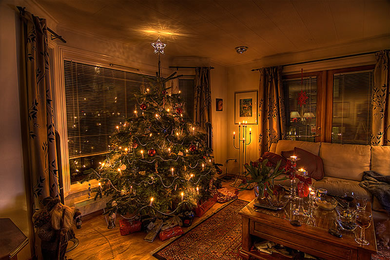 christmas tree photos at home