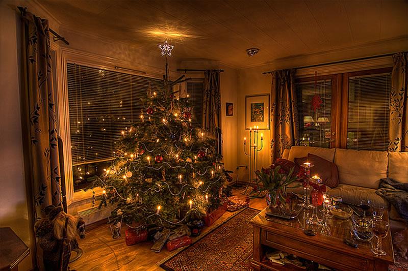 christmas tree photos at home