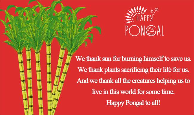 Pongal Msg Pics