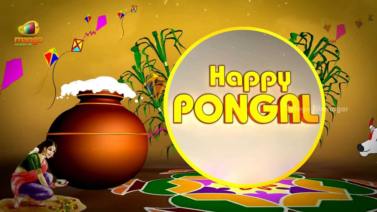 animated pongal images