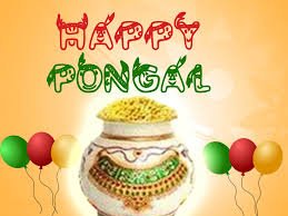 pongal cards