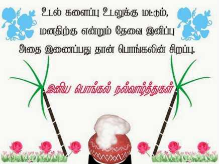 pongal messages tamil