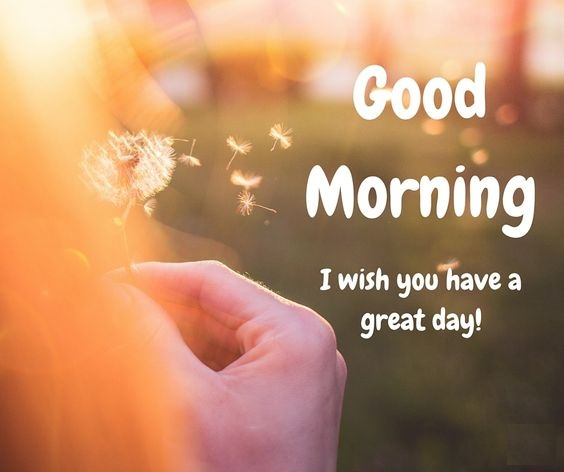 Images of Good Morning for Lover