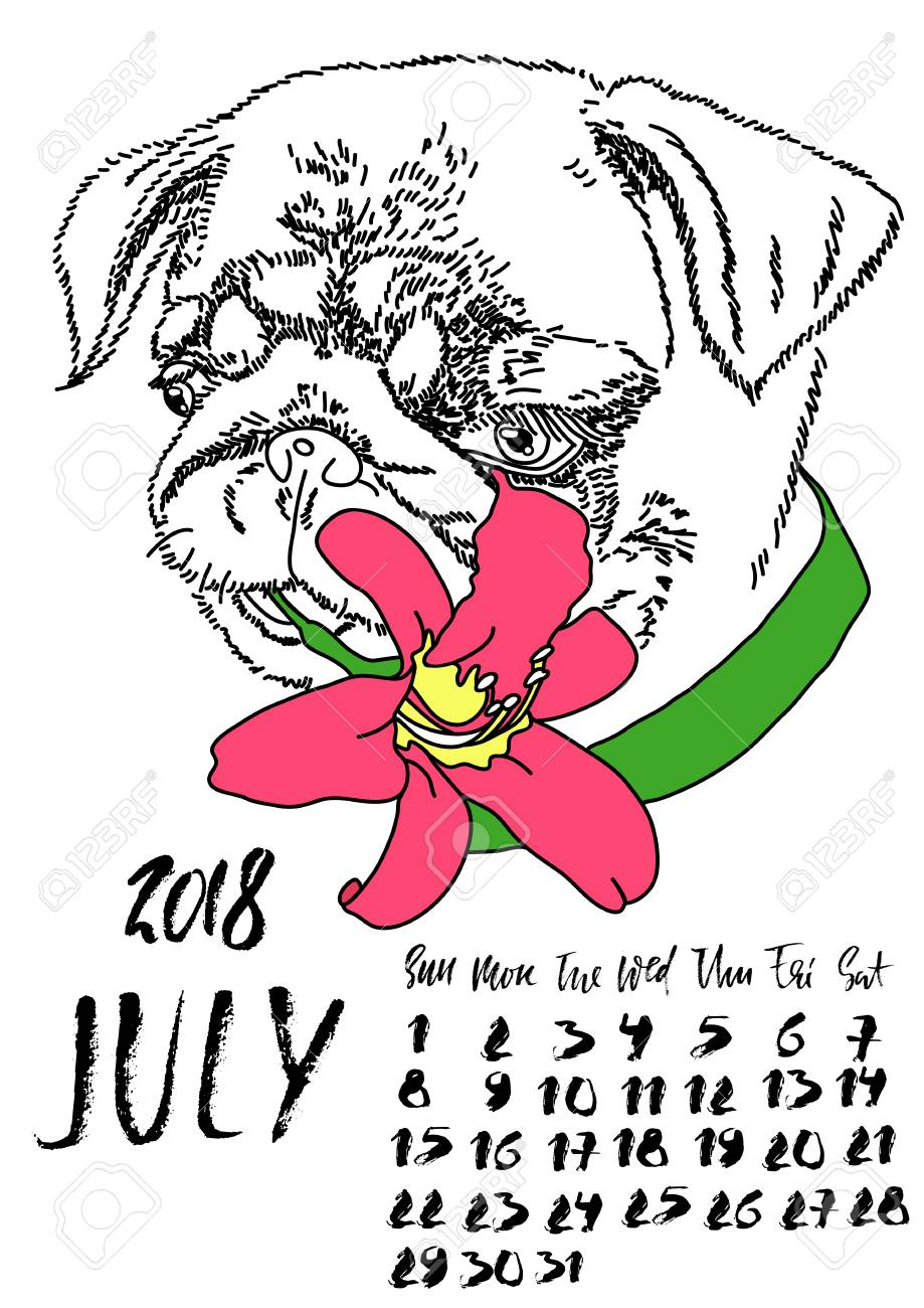 Cute July 2018 Calendar Design