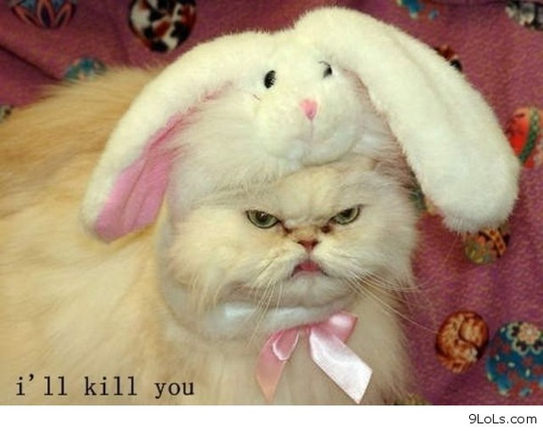 Funny Happy Easter Photos